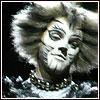 http://cats.musicals.ru/newsite/img/20.jpg