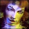 http://cats.musicals.ru/newsite/img/cat03.jpg